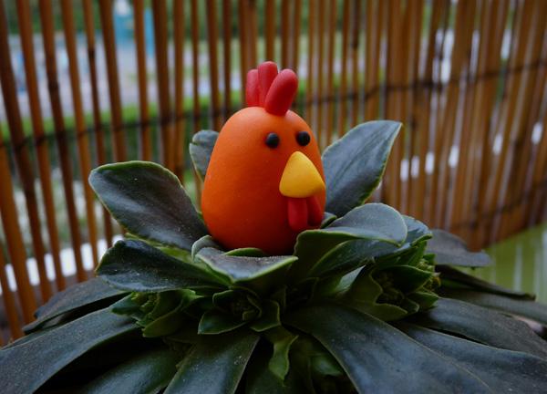 cocotte-orange