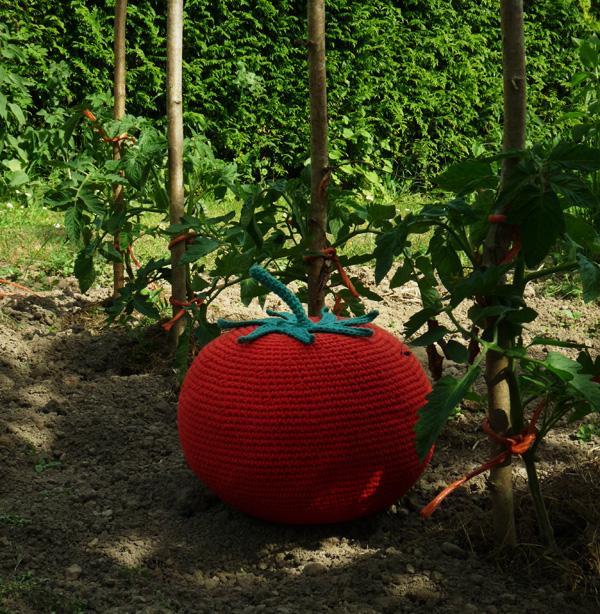 tomate-jardin3