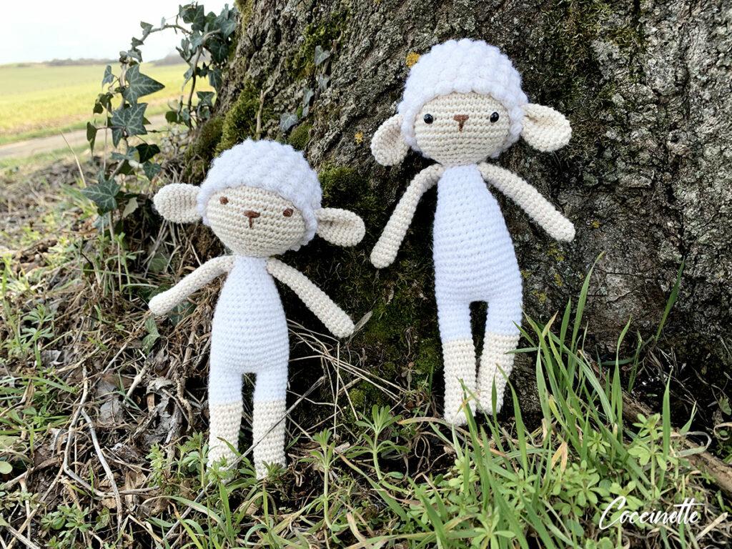Frères de laine