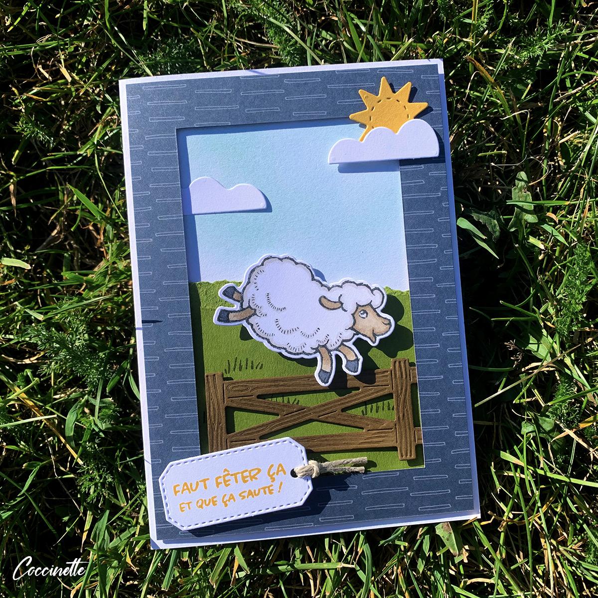 Carte saute-mouton